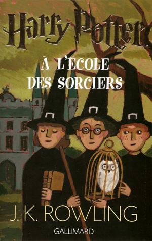 harry-potter,-tome-1---harry-potter-a-l-ecole-des-sorciers-337687